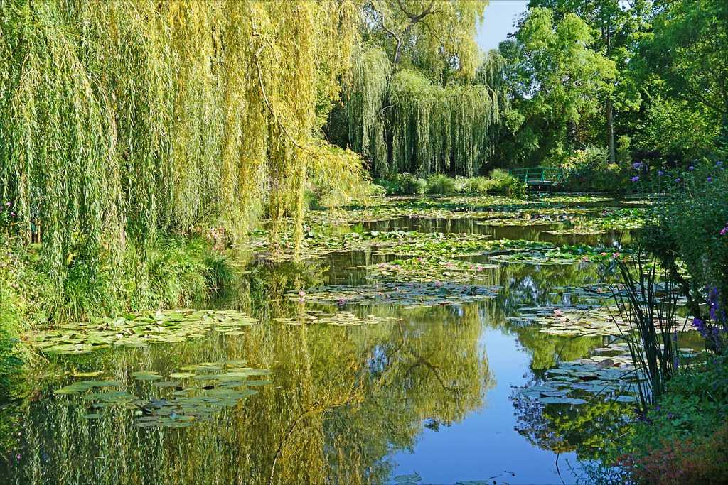 camping Giverny Jardin D'eau Claude Monet